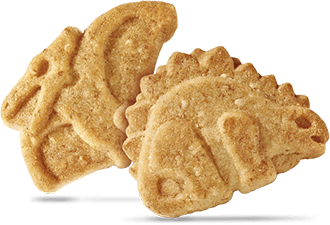 Cookie of Dinosaurus Cookienss Cereals